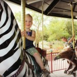exotic animals Carousel the living desert