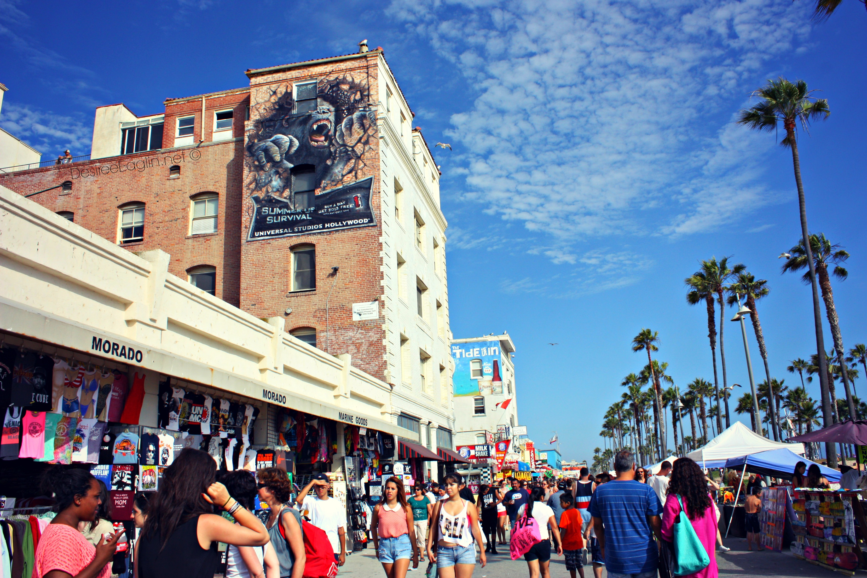 Venice Beach Restaurant Reviews